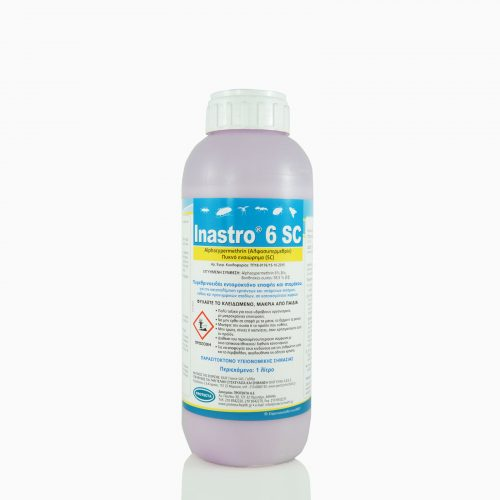 INASTRI-6-SC-1